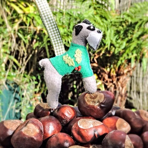 @btinahat Dex from Twitter Christmas Competition entry. One of my Schnauzers conquering a pile of conkers. Bonkers! But seasonal and funny. Can you do better?