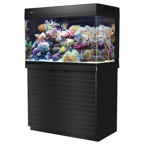 tritOO Sale aquarium fish tanks that pet place