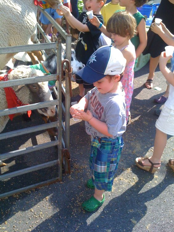 Day Trippin': Visit a Long Island Farm