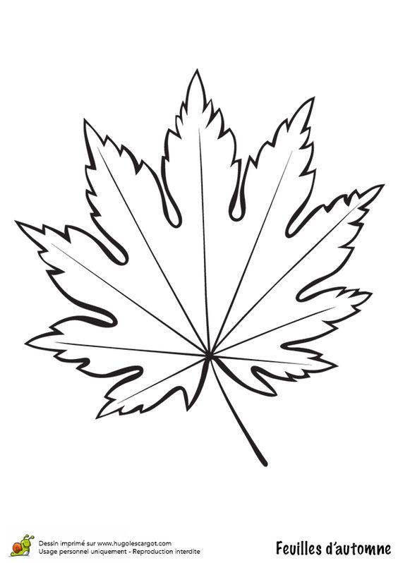 Coloriage dessin feuilles automne rable coloriages - Dessin feuilles ...