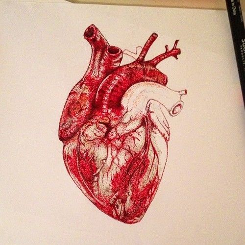 human heart art watercolor - Google Search | The book of ...