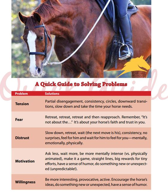A quick guide to solving problems from Parelli Natural Horsemanship! Learn more by clicking here: www.parelli.com/the-four-savvys
