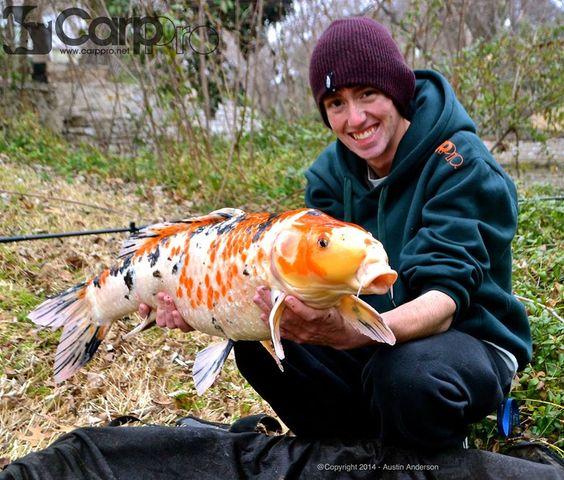 Carp pics and carp fishing tips go to www catsandcarp com or ike us