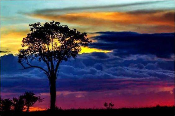 Atardecer en Manabi-Ecuador !! Majestuosa foto, donde la caída del sol pinta artisticamente los colores patrios... Amarillo, Azul Y Rojo!