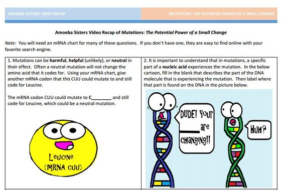 mutation handout made by the amoeba sisters click to visit website and scroll down to download. Black Bedroom Furniture Sets. Home Design Ideas