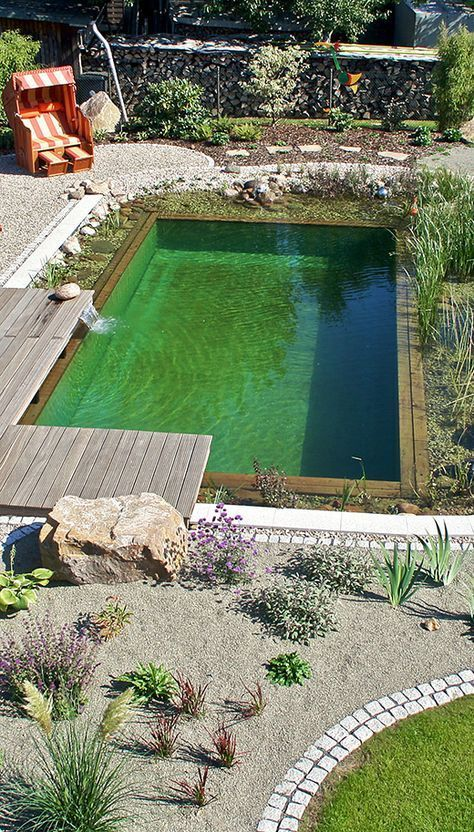 Natural pool oasis with color accents natural pool ...