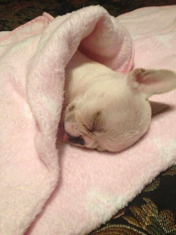 Sleeping princess!!! Awe