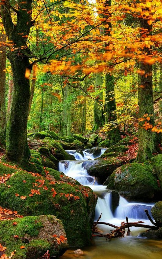 Parures Housses De Couette Nature Et Paysages Photo Paysage Magnifique Nature Paysage Paysage