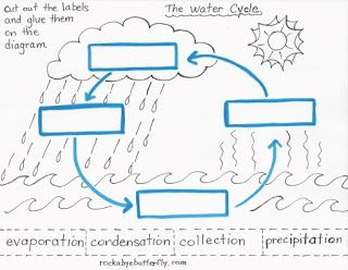 Worksheets Label  The Diagram  Of Water  Cycle lesson plan rockabye butterfly the water cycle this has