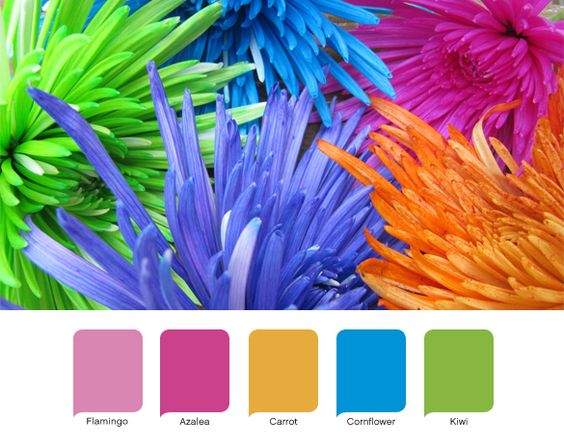 Wedding, Beaches and Tropical colors on Pinterest