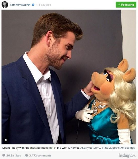 VJBrendan.com: Liam Hemsworth Flirts with Miss Piggy in His First Instagram Post