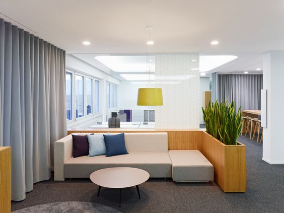 snake plant and wood planterdivider could be laminatedbuild with our film build office video