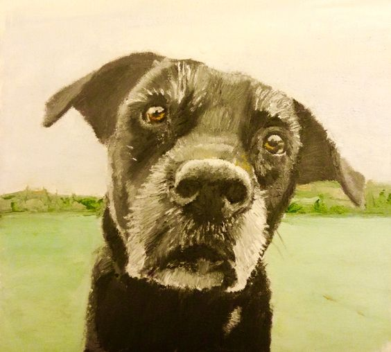 I painted  this dog in oils. I'm really pleased with the result. This is a commissioned painting. I charge the same for oils as I do for coloured pencils but please allow longer for oils to dry before shipping :)