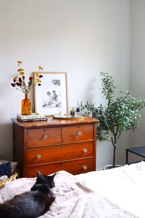 Bedroom How To Decorate Your Apartment For Fall Under 100