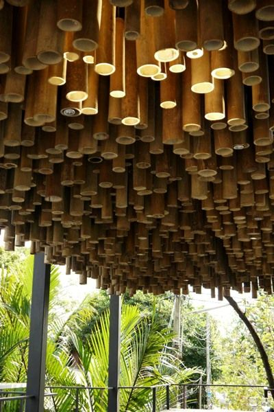 House Bamboo Ceiling And Trees On Pinterest