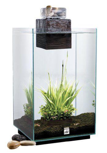 Fluval chi aquarium kit 6 6 gallon the for Fluval chi fish tank