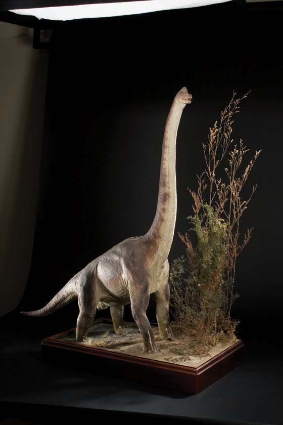 brachiosaurus jurassic park - photo #34