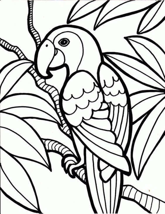 45 Free Printable Coloring Pages To Download Buzz16 Jungle Coloring Pages Bird Coloring Pages Animal Coloring Pages