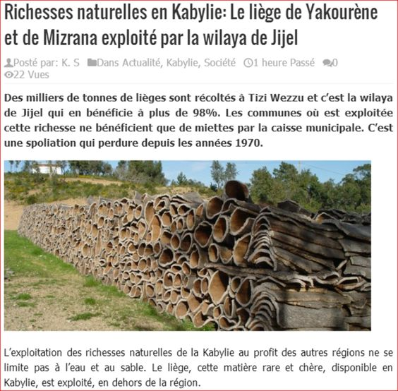 =======INDEPENDANCE DE LA KABYLIE=======: Richesses naturelles en Kabylie: Le liège de Yakou...