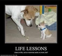 Lessons Learned In Life Image Quotes