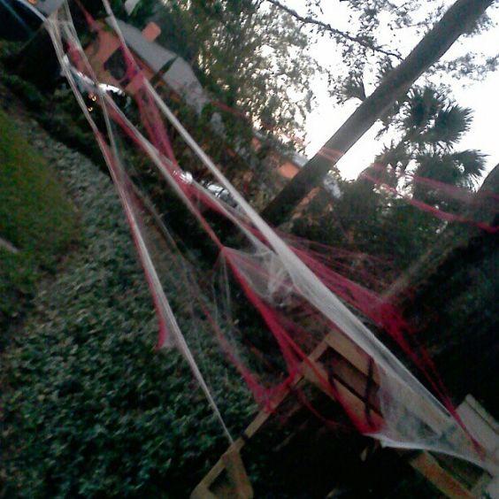 #spooky #house #halloween #spiderweb #trickortreat #oldnortheast #stpetersburg #florida