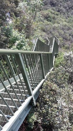 Sentiero panoramico Busatte Tempesta, Torbole: Consulta 54 opiniones, artículos, y 45 fotos de Sentiero panoramico Busatte Tempesta, clasificada en TripAdvisor en el N.°2 de 15 atracciones en Torbole.