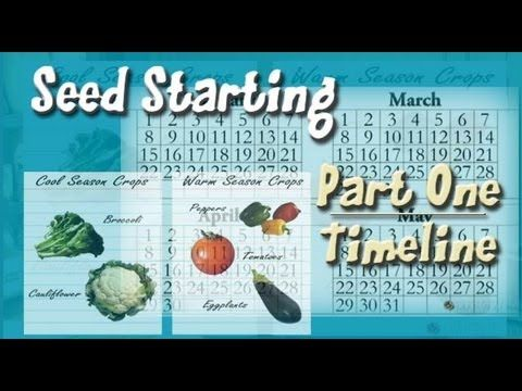 Part one of a 5 part series on growing plants from seeds. Really useful!