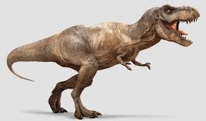 Bildergebnis für dinosaurier
