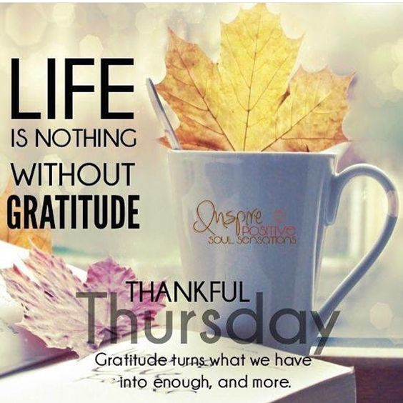 Thankful Thursday Quotes: Warm, God And Be Thankful On Pinterest
