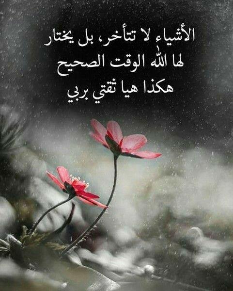 Pin By Semsem Batat On رمزيات Arabic Quotes Movie Posters Wisdom