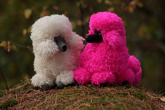 Poodles, Patterns and Pattern library on Pinterest