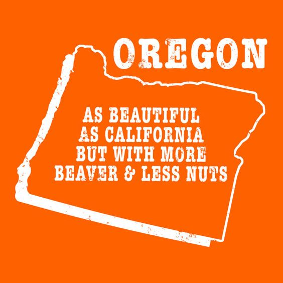 Oregon state slogan shirt  MORE BEAVER LESS NUTS   by StateSloganTees $18.00