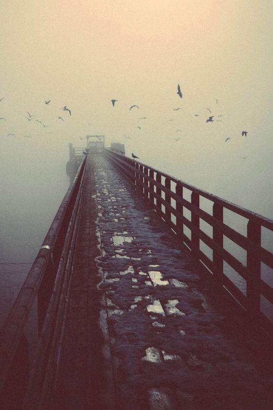 Caminemos juntos  que te párese... -M.R-