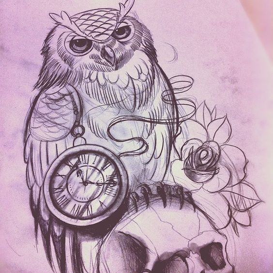 #willemxsm #illustration #owl