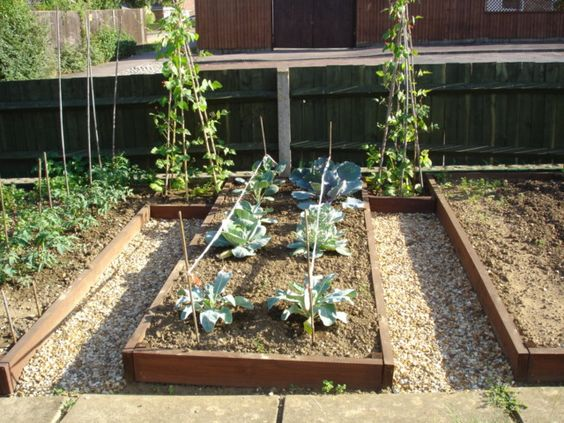 Raised Flower Bed Design Ideas |   Planting Beds In A Growing