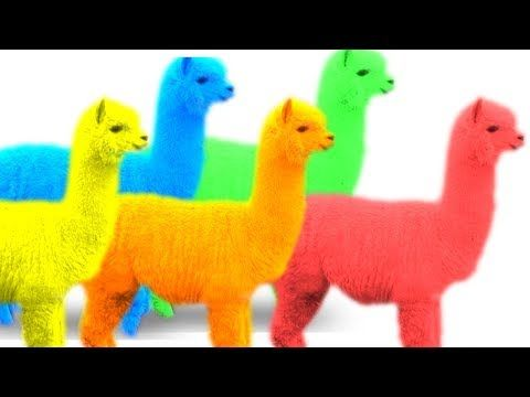 Learn Funny Animal Names In English For Kids Toddlers Youtube