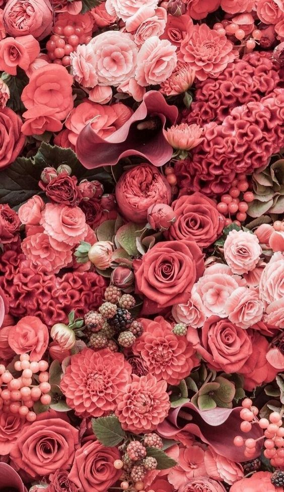 Flores Rosa Wallpaper Iphone Fondosdepantalla Pink Wallpaper Iphone Spring Wallpaper Spring Wallpaper Hd