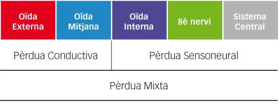 Tipus de pèrdua audtiva. Audiopacks - audiologia i logopèdia a Barcelona