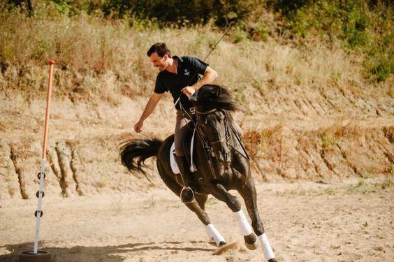 www.pegasebuzz.com | Quinta Do Rol Equestrian Resort.