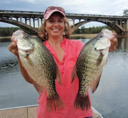 Fishing black and app on pinterest for Best crappie fishing times