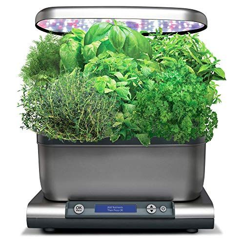 Today Only Amazon Aerogarden Harvest Grey Herbs Herb Seeds