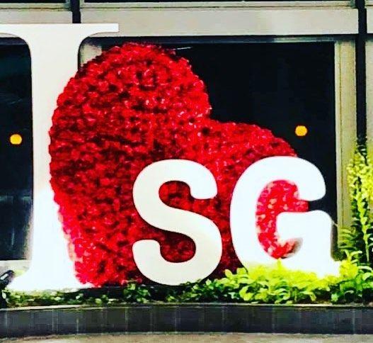 Loving Singapore See You Soon Always Surprising Me