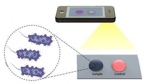 Bientôt un diagnostic médical avec son smartphone