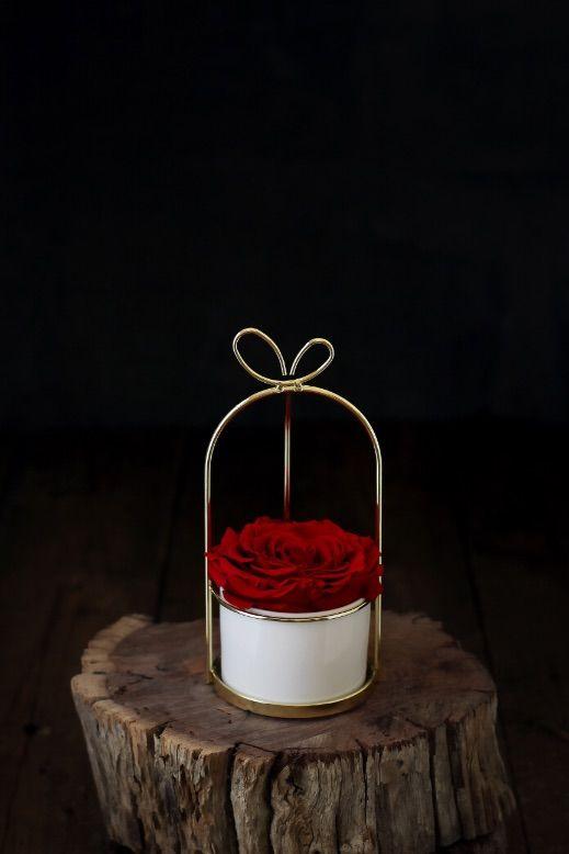 سلة فيونكة ورد ايلوبا روز طبيعي دائم Yellow Aesthetic Pastel Online Gift Store Gifts