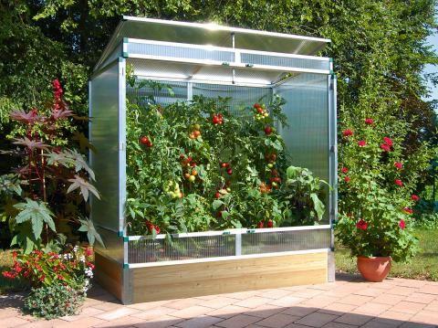 Gewachshauser Fur Balkon Garten Terrasse In 2020 Tomaten Haus Gewachs Gewachshaus