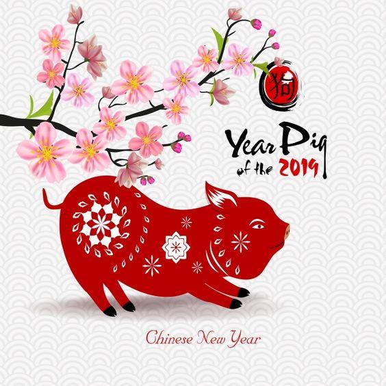 새해 복 많이 받으세요 메리 크리스마스 및 Chienese 새해 좋아 흰 돼지 Png 및 벡터 에 대한 무료 다운로드 크리스마스 손글씨 메리 크리스마스