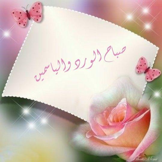 صباح الورد والياسمين لكل الغالين Good Morning Arabic Beautiful Morning Good Morning