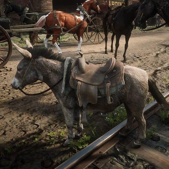 d2ec93cb0c5c65ce53a243e4af7400f0 - How To Get A Donkey In Red Dead Redemption