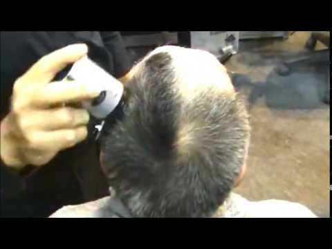pelo en polvo  2