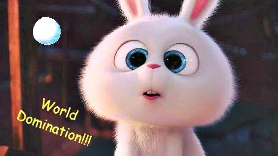 Pin By Ritika Goyal On Secret Life Of Pets Cute Bunny Cartoon
